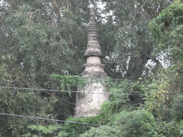 Chedi close-up